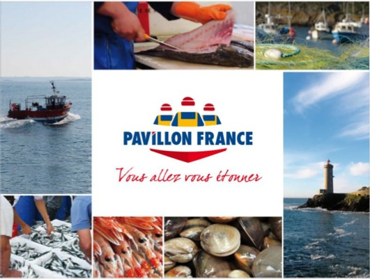 S46pavillon_france_apacom