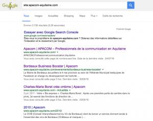 google-technique-sel